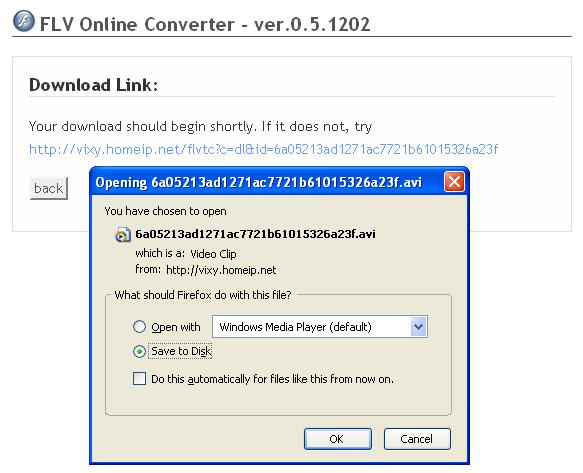 Download after FLV Convert