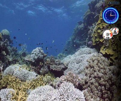 Aqua DreamScene Video
