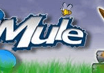 eMule 0.48a for Windows Vista Free Download