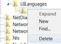 Delete UI Language Setting in Registry
