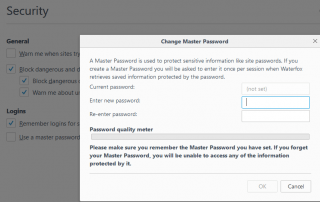 Firefox Master Password