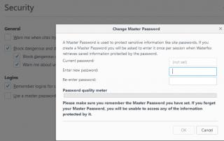 Firefox Master Password